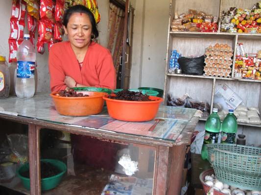 Nepal 2011 - eine Frau verkauft u.a. Lapsi-Trockenfrüchte in ihrem Landen IMG_5250